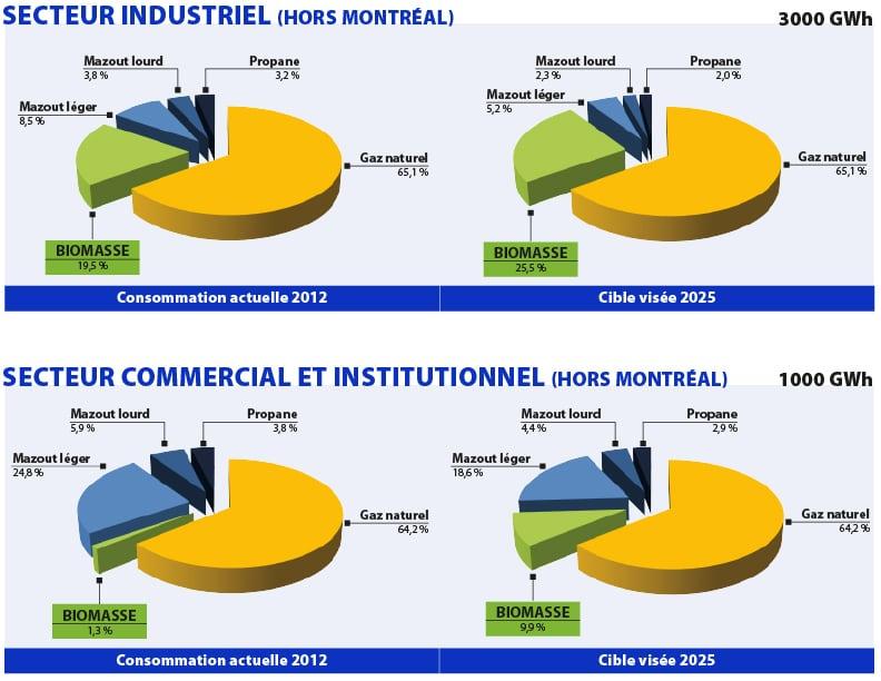 Marché visé © Vision Biomasse Québec