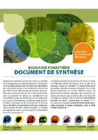 Biomasse forestière et climat : document de synthèse (2014)