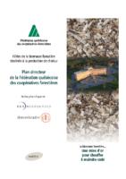 Plan directeur du développement de la filière de la biomasse forestière destinée à la production de chaleur (2013)