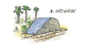Séchage © Fédération québécoise des coopératives forestières
