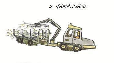 Ramassage © Fédération québécoise des coopératives forestières