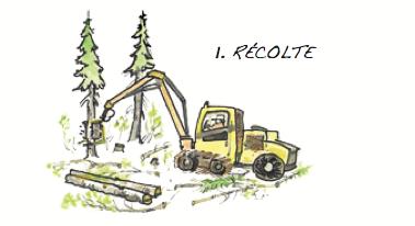 La récolte © Fédération québécoise des coopératives forestières