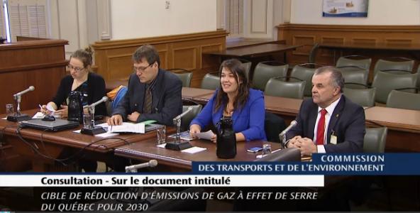 Mme Marie-Paule Robichaud (CQCM), M. Eugène Gagné (FQCF), Mme Amélie St-Laurent Samuel (Nature Québec) et M. John W. Arsenault (QWEB)