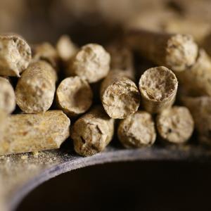 Granules, biomasse forestière résiduelle